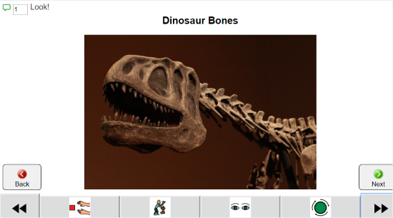 Dinosaur Bones above photo of skeleton. Below are icons for communication and in the upper left the word Look and a symbol for the number of comments recorded.
